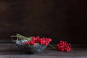 red viburnum on a brown background