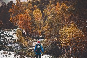 Traveler hiking in autumn forest