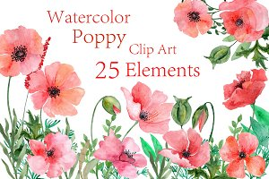 Watercolor Poppy flowers clipart