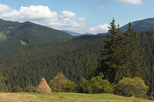 Summer Carpathian mountain panorama