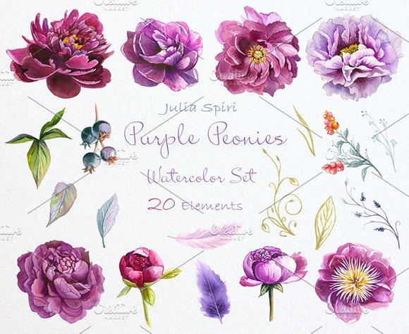 Purple peonies watercolor clipart illustrations creative market mightylinksfo