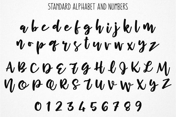 Cherry Cordial Display Script Font Fonts Creative Market