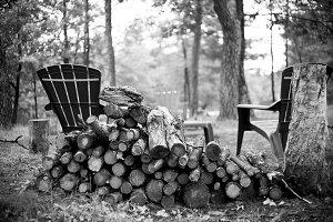Fire Wood #3