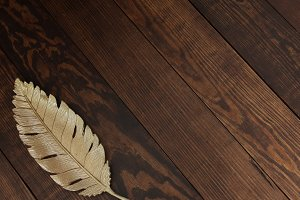 Gold Feather on Wood