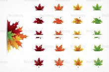 Autumn Maple Leaves Vector Pack
