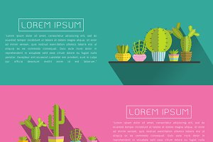 succulent plants and Cactus