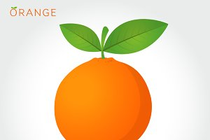 orange vector icon cartoon style
