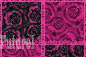 "Raspberry patchwork"" Roses."""