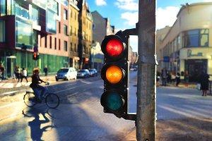 Traffic light. Riga. Summer