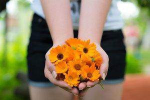 Girl holding marigold flowers.