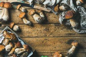 Freshly picked forest mushrooms