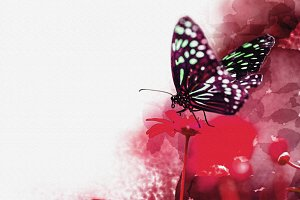 watercolor of beautiful butterfly