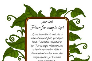 Green leaf with frame for text
