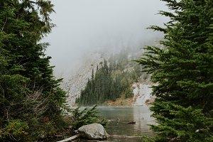 Lake and Pine
