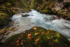 Vintgar Gorge in autumn