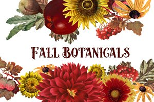 Vintage Fall Botanical Clipart