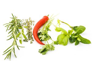 Herbs with red pepper