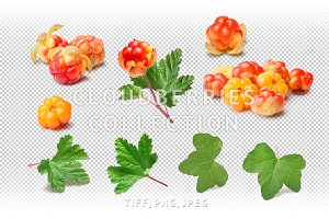 Cloudberries set