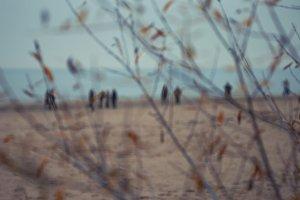 People walk on autumn beach