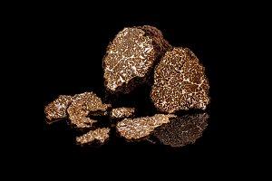 Black truffles mushrooms