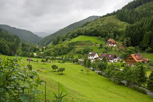 Landscape in the Black Forest