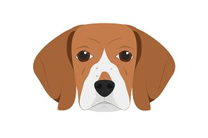 Beagle dog Vector Illustration