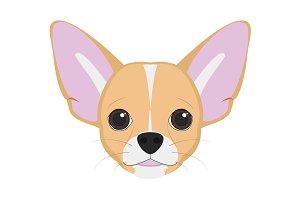 Chihuahua dog Vector Illustration