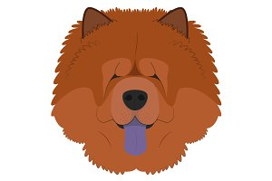 Chow Chow dog Vector Illustration