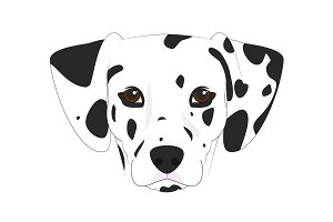 Dalmatian dog Vector Illustration