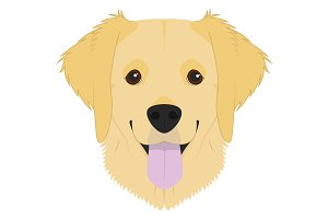 Golden Retriever Vector Illustration