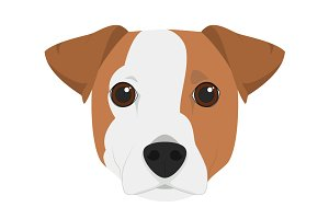Jack Russell Vector Illustration