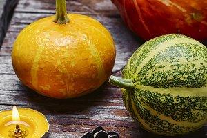 Still life with mini pumpkins
