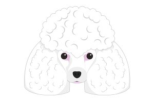 Poodle dog Vector Illustration