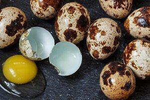 Fresh organic quail eggs
