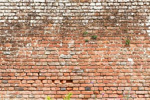 Brick wall background for design works