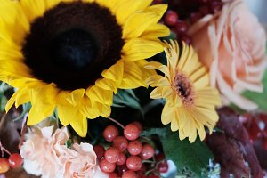 soft focus autumn flowers bouquet