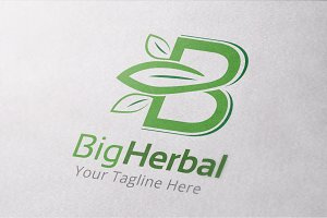 Big Herbal Logo Template
