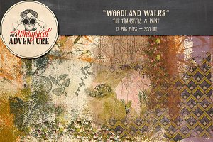 Woodland Walks Transfers And Paint