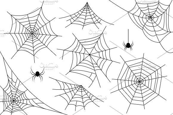 Ai+PNG..Halloween spider web. Vector - Illustrations