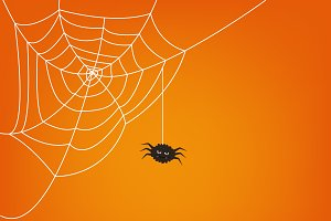 Ai+PNG..Halloween spider web. Vector
