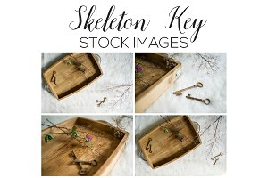Skeleton Key Stock Image Bundle
