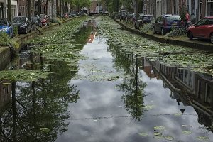 Small canal in Delft