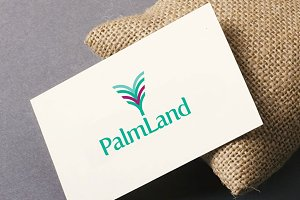 Palm land