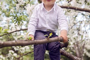 little boy blond in a white shirt and blue pants sitting on flowered tree