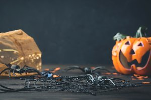 Halloween background with spiders and squash