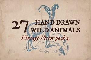 27 Hand Drawn Wild Animals
