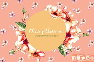 Cherry blossom watercolor clip art