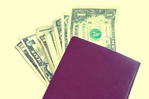 european passport with dollars