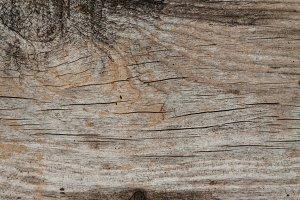 Wood texture part 2 XVIII