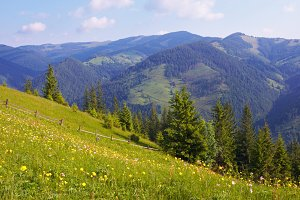Summer Carpathian mountains, Ukraine